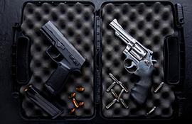 envolve-segmentos-armas-municao